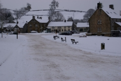 Snowy Hartingon